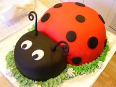 Alyssa's Lady Bug Birthday Cake by melissa collins calkins, via Flickr @Amy Lyons Lyons Lyons Willems - an idea finally came to me! how bout a lady bug party?! :)