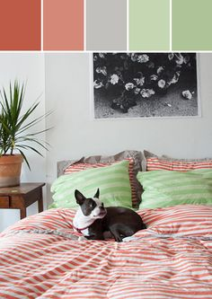 ❤ =^..^= ❤  Colorful 80's Home Designed By Lisa Perrone | Stylyze Creative Director via Stylyze