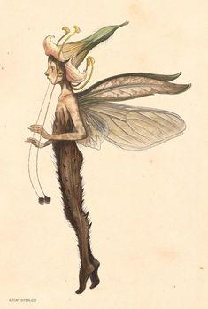 Magical Creatures, Fantasy Creatures, Fairy Drawings, Fairytale Drawings, Fantasy Drawings, Arte Sketchbook, Fairytale Art, Hippie Art, Fairy Art