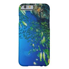 This iPhone 6 case features a school of colorful Big Eye Snapper hanging out together on Australia's Great Barrier Reef in the Coral Sea.