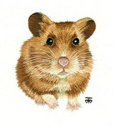 Hamster Work in Progress Pictures: Needle Painting Hand Embroidery, a Hand Embroidery Design as an Alternative to Cross-stitch.