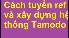 Tuyển ref Tamodo bằng cách nào? Xây dựng hệ thống Tamodo ra sao?