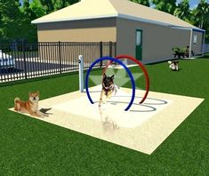 The Mist Hoop Tunnel is easy to install and adds a fun, low-flow waterpark style… - luxury dog kennel Dog Friendly Backyard, Dog Backyard, Backyard Ideas, Dog Playground, Backyard Playground, Playground Ideas, Luxury Dog Kennels, K9 Kennels, Dog Yard