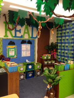 jungle themed classroom library