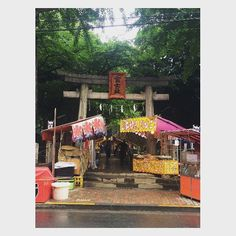 "The opening day of ""Mt. Fuji"" in Komagome Fuji Shrine. Many stalls sell foods sweets and children's toys. #tokyo #japantravel #shrine #mtfuji #fujisan #festival #summerfestival"