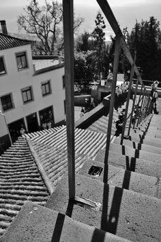 Madeira. Photo by B. Hermsen