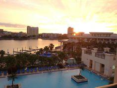 Tampa Marriott Waterside Hotel and Marina - Tampa, FL - Kid friendl... - Trekaroo