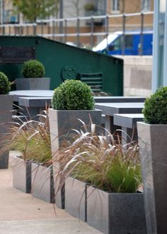Box and grass planters at restaurant