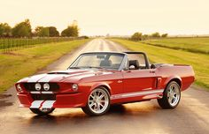 Google Image Result for http://www.blogcdn.com/www.autoblog.com/media/2012/07/02-classic-recreations-shelby-gt500cr-convertible-1341344862.jpg