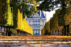 | ♕ | Autumn in Paris - Louvre from Tuileries Gardens | by © Mathew Lodge