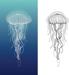 Abstract graphic illustration of jellyfish in vector - Abstract graphic illustr. - Abstract graphic illustration of jellyfish in vector – Abstract graphic illustration of jellyfis - Jellyfish Quotes, Jellyfish Facts, Jellyfish Tank, Jellyfish Drawing, Jellyfish Aquarium, Jellyfish Painting, Jellyfish Tattoo, Watercolor Jellyfish, Tattoo Watercolor