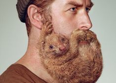 the beard trend has quickly become an international craze and grooming brands, like razor company schick, aim to encourage the regular trimming and upkeep of burly facial hair. for their latest advertising campaign, they've teamed up with YR new zealand to create a humorous and bizarre series featuring three men with 'beastly' beards.