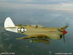 P-40 Warhawk   40 Warhawk by Bob Aikens (AMT 1/48)