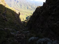 Royal Natal And Drakensberg Amphitheatre Slack Packing Hike Days) - Drakensberg Hiker Short Couples, Cool Restaurant, Sea Level, Day Hike, Great View, Slacks, Paths, Hiking, Camping