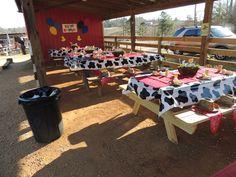 Farm/Barnyard Birthday Party Ideas | Photo 4 of 42 | Catch My Party