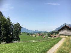 Blog über das Reisen und wandern. Zurzeit vorallem Wandern in der Schweiz. Fernziel ist der Fernwanderweg E1 Hiking Dogs, Switzerland, Summertime, Golf Courses, Trail, Outdoor, Blog, Hiking, Home