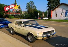 True Car, 1968 Mustang, Online Publications, Vanity Plate, S Car, First Car, Audio Equipment, Father And Son, Number One