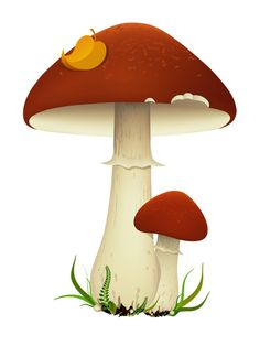 Illustration about Vector illustration of mushrooms with leaf and grass. Illustration of fungi, growth, leaf - 8586841 Cute Animal Drawings, Cartoon Drawings, Easy Drawings, Mushroom Drawing, Mushroom Art, Mushroom House, Mushroom Tattoos, Tattoo Flash Art, Bee Art