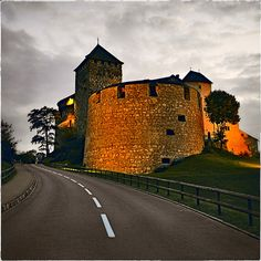 vaduz liechtenstein   Vaduz Castle of Liechtenstein ( By Yuriy Nezdoiminoga )