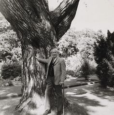 The last photograph taken of Tolkien, on 9 August 1973 (he died less than a month later). He is standing in the Botanic Garden, Oxford, next to his favourite tree, the Pinus Nigra © The Tolkien Trust The Hobbit Author, Middle Earth Books, Midle Earth, Catholic Gentleman, Fantasy Words, Into The West, Book Of Kells, Jrr Tolkien, Sculpture