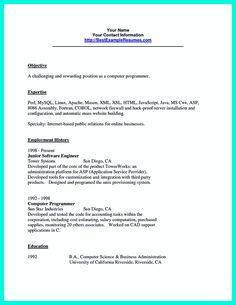 Programmer Resume Example Cool Computer Programmer Resume Examples To Impress Employers .