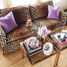purple + leopard {love a pop of unexpected color and print} HELLO COUCH! Animal Print Decor, Animal Prints, Animal Print Furniture, Animal Print Fashion, Diy Décoration, Cheetah Print, Leopard Print Bedroom, Leopard Prints, Living Room Decor