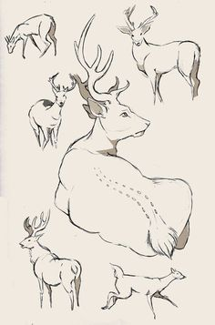 Тру Художник|Уроки рисования|Арт Портреты