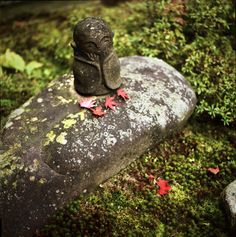 Little Buddha statue in Kyoto, Japan: photo by yocca, via Flickr