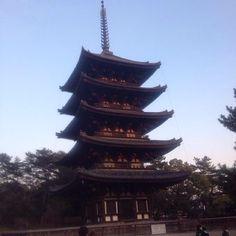 """興福寺 五重塔 Kofukuji Five-Storied Pagoda  #pagoda #fivestoriedpagoda #nara #japan #탑 #일본 #나라 #여행 #五重塔 #日本 #奈良 #旅行"" Photo taken by @ishideo on Instagram, pinned via the InstaPin iOS App! http://www.instapinapp.com (06/14/2015)"