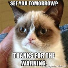 Grumpy Cat  - See you tomorrow? THANKS FOR THE WARNING.