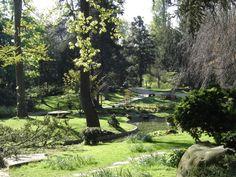 Jardin d'Albert Kahn