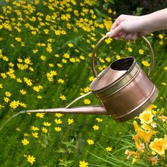 Small Oval Hammered Copper Watering Can