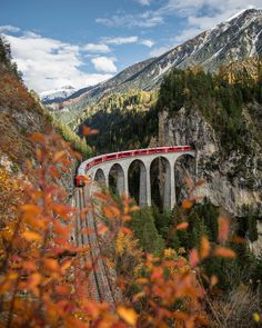 Landwasser Viaduct, Switzerland - by Sylvia Michel Medieval, By Train, Switzerland, Nature, Places To Go, Road Trip, Boat, Mountains, Travel