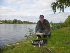Nice day's Roach Fishing on Oulujoki - Not often you get Roach that need 2 hands :-)
