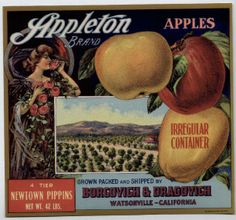 Manzanas Appleton