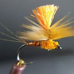 @katie_flyfishing snapped this nice photo of my Halloween inspired parachute dry fly.  This one is tied on a size 14 @fulling_mill Ultimate Dry Fly Hook with a CDL tail, orange holographic tinsel underbody, orange stripped quill, @whitingfarms barred dark ginger hackle and topped off with orange McFlyon.  #flyfishfood #orvissevierville #whitingfarms #fullingmill #fullingmillusa #flytying #flytyingjunkie #flyfishtennessee #tieyourown