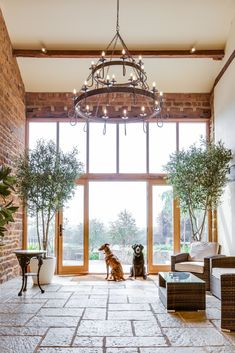 Crockwell is a dog-friendly wedding venue in Northamptonshire. Wedding Venues Northamptonshire, Farm Wedding, Dog Friends, Entrance, Family Room, Entryway, Family Rooms, Doorway, Drawing Rooms