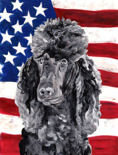 Black Standard Poodle with American Flag USA House Vertical Flag