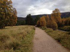 Aveimore, Scotland.