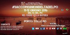 #baccoreuniondeltadelpo 11-12 Giugno 2016,Porto Tolle RO, Delta del Po. BACCO REUNION