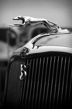 Timmis-Ford V8 Greyhound Hood Ornament - by Gordon Dean II