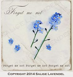 Salige Lavendel Forget Me Not, Little Flowers, Watercolor Tattoo, Bullet Journal, Romantic, Ink, Tattoo Art, Apothecary, Illustration