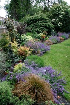 Excellent example of how to pair repetition (purple catmint and orange sedge grass in the foreground) with diversity- many of the plants are only used once. To make the onesies fit in, use different plants of the same color. Garden Shrubs, Lawn And Garden, Garden Plants, Side Garden, Easy Garden, Garden Ideas, Back Gardens, Outdoor Gardens, Garden Cottage
