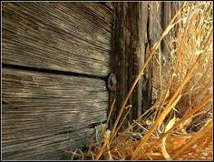 Image result for stable+wood texture