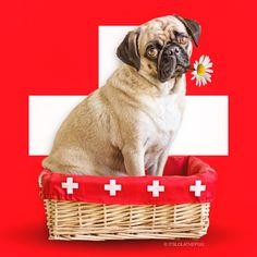 Happy birthday Switzerland 🇨🇭❤️🇨🇭 August is the national holiday in switzerland.