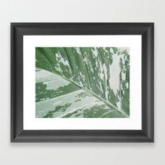 Leafy Abstract Framed Art Print