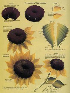 Sunflower Worksheet.