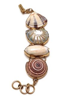 Image from http://cdn.shopify.com/s/files/1/0233/9591/products/Nautilus_Shell_Bracelet-1.jpg?v=1394419138.