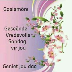 Sunday Quotes, Good Morning Quotes, Lekker Dag, Sunday Greetings, Afrikaanse Quotes, Goeie Nag, Goeie More, Special Quotes, Love Rose