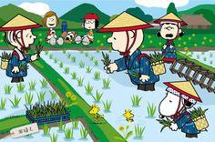 "Peanuts and snoopy in China スヌーピーとゆかいな仲間たちが田植えや醤油造りを体験 銀座三越で日本の""おいしい""をお届け 4枚目"
